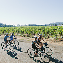 Tour Napa Valley by Bike