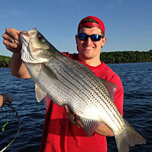 Striped Bass Fishing Charter near Nashville