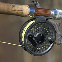 Guided Fly Fishing in Nashville