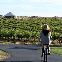 Carneros Bike and Wine Tour