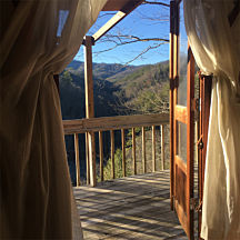 View From Yurt in Nantahala