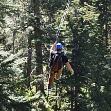 Zipline Tour in Alaska