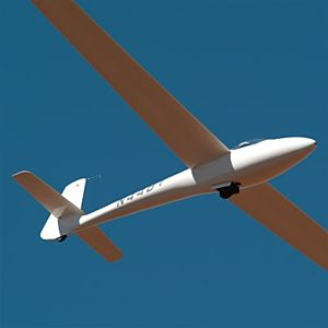 Glider Ride for 2 in Los Angeles