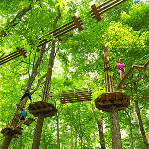 Zip Line Adventure Course