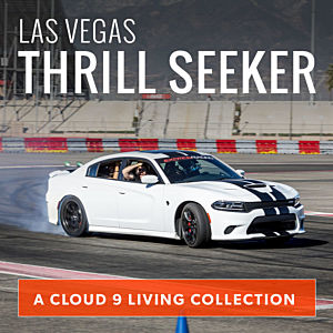 Las Vegas Thrill Seeker Collection