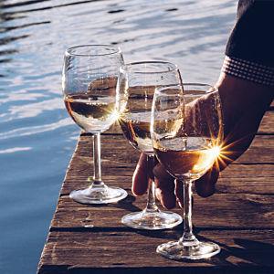 Kayak & Winery Tour