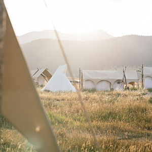 Glampground near Yellowstone