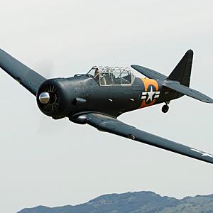 Ride in a T6 Warbird