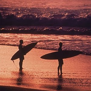 Private Surfing Lesson in San Francisco