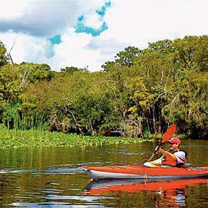Kayaking the Wekiva River during Tour
