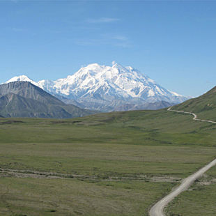 Multi Day Denali Tour