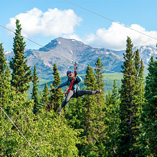 Ziplining in Denali Park