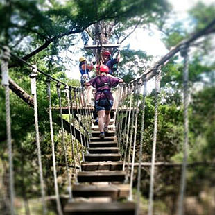 Canopy Tour and Zipline