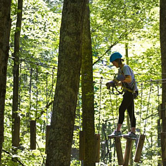 Play Among The Trees in Lansing