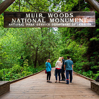 Tour Muir Woods