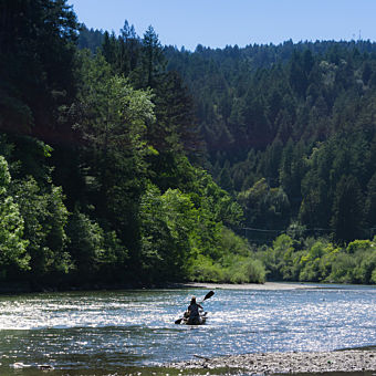 Kayaking on the Russian River