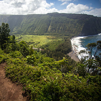 Big Island Sightseeing Tour
