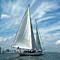 Wine Tasting Sailing Experience in NY