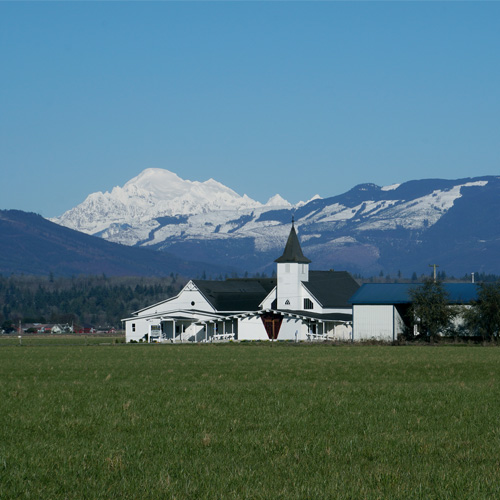 Guided Skagit Valley Tour