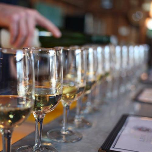 Sample Wines on Long Island Tour