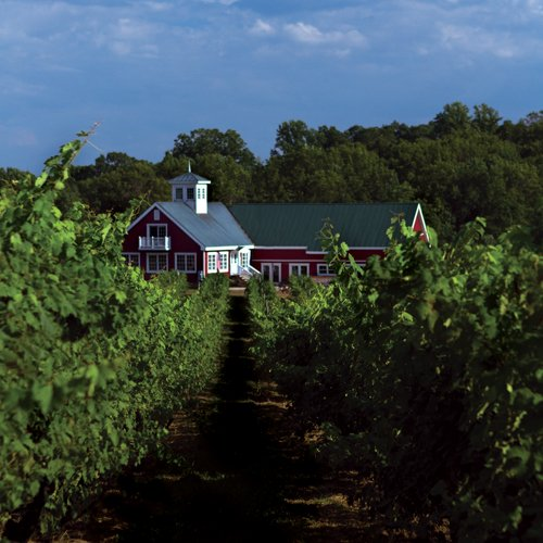 Private Wine Education Course in Washington DC