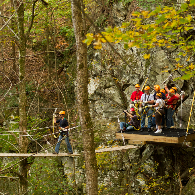 Ziplining in the Smoky Mountain Forest