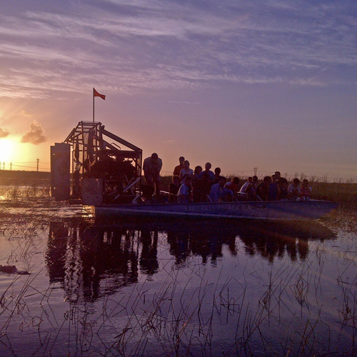 Airboat Adventure at Night near Miami
