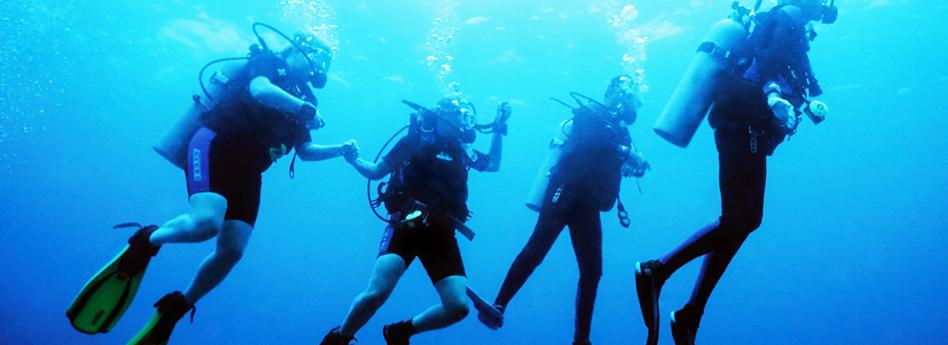 Learn To Scuba Dive Scuba Diving Lessons Cloud 9 Living