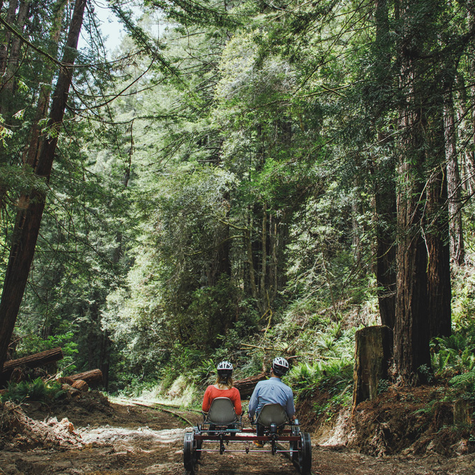 Peddle the Redwood Route