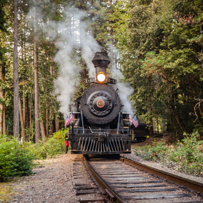 Train Tour from Fort Bragg