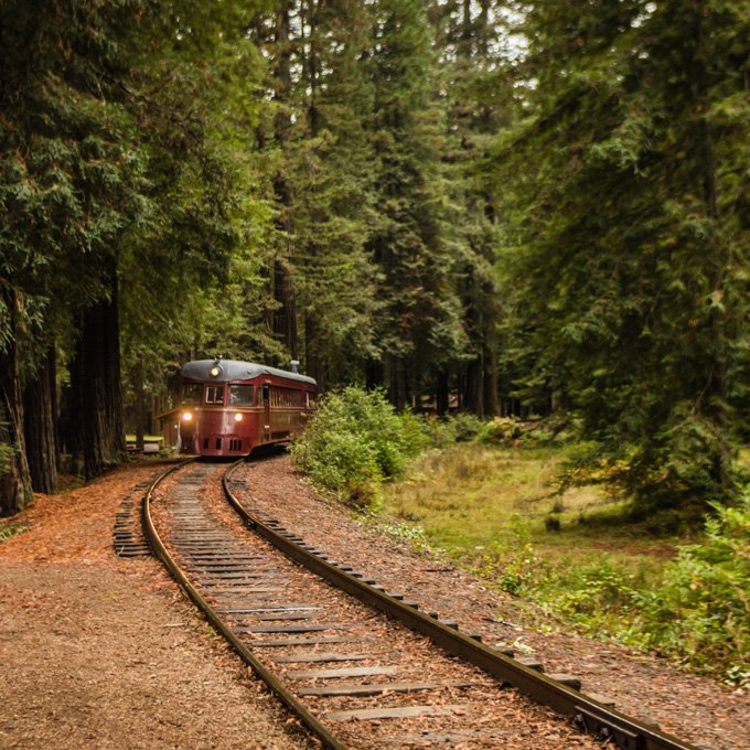 Ride the Rails through Redwoods