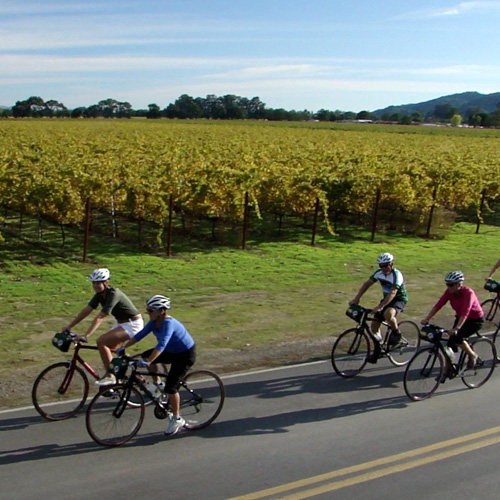 Sonoma Valley Bike Tour