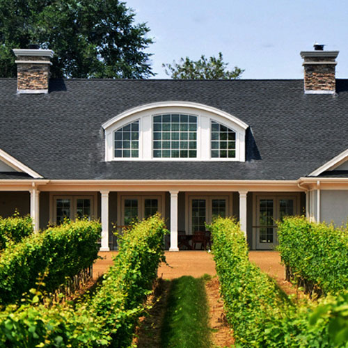 Sparkling Wine Tasting and Vineyard Tour in New York