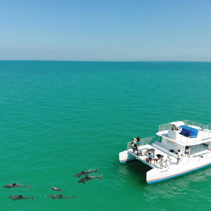 Cruise with Dolphins in Key West