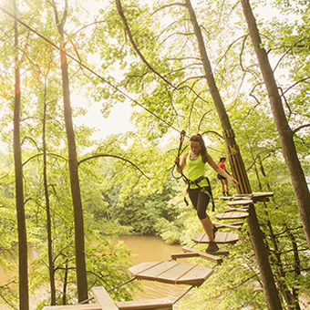 Treetop Adventure in Blue Jay Point County Park