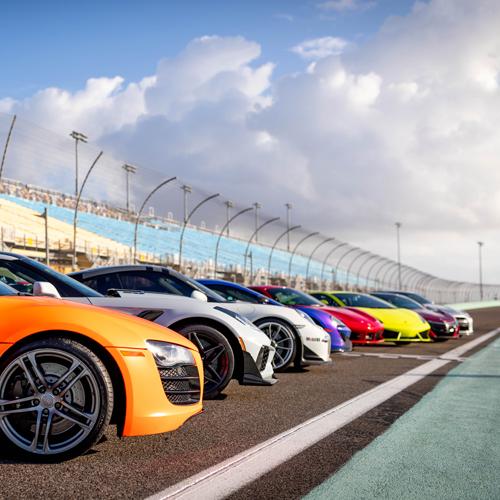 Multiple Car Racing Experience