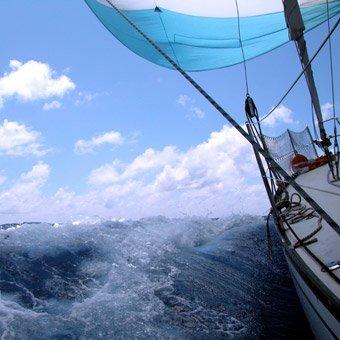 Amelia Island Sailing Charter in Jacksonville