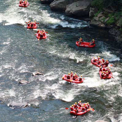 Guided Whitewater Rafting Experience