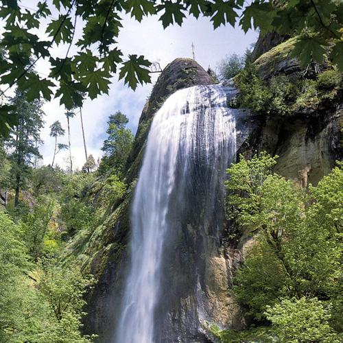 Willamette Valley Wine & Waterfalls Tour in Portland