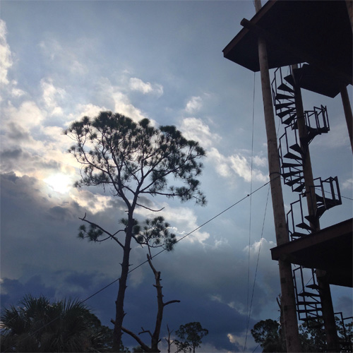 Guided Zip Line Tour in Tampa