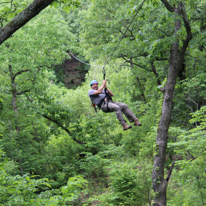 Zipline through the Trees
