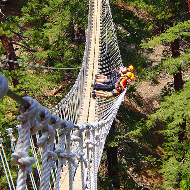 Treetop Adventure near Los Angeles